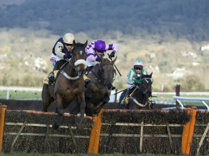 Cheltenham Horses Jumping