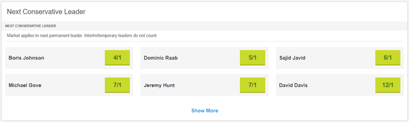 next conservative leader odds