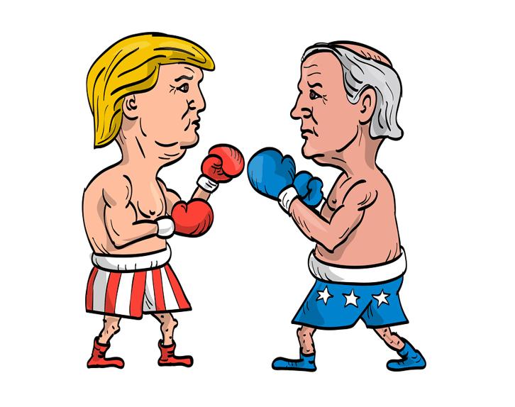 Trump v Biden Boxing Cartoon
