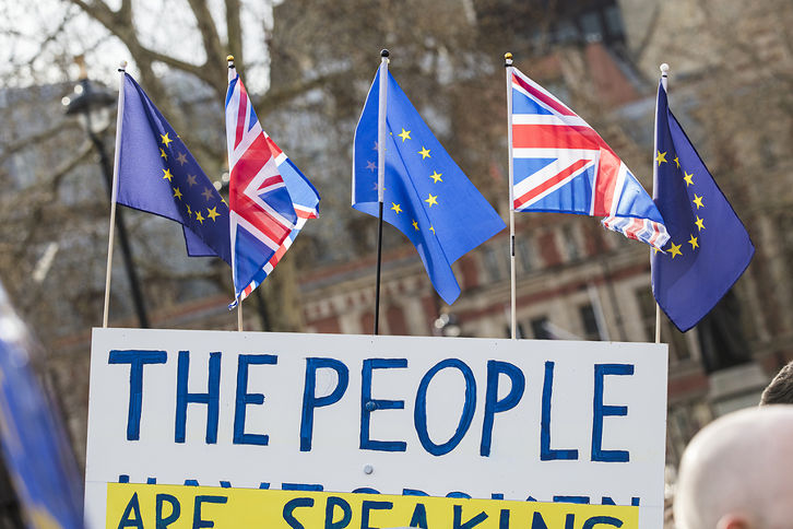 Anti Brexit Protest Banner